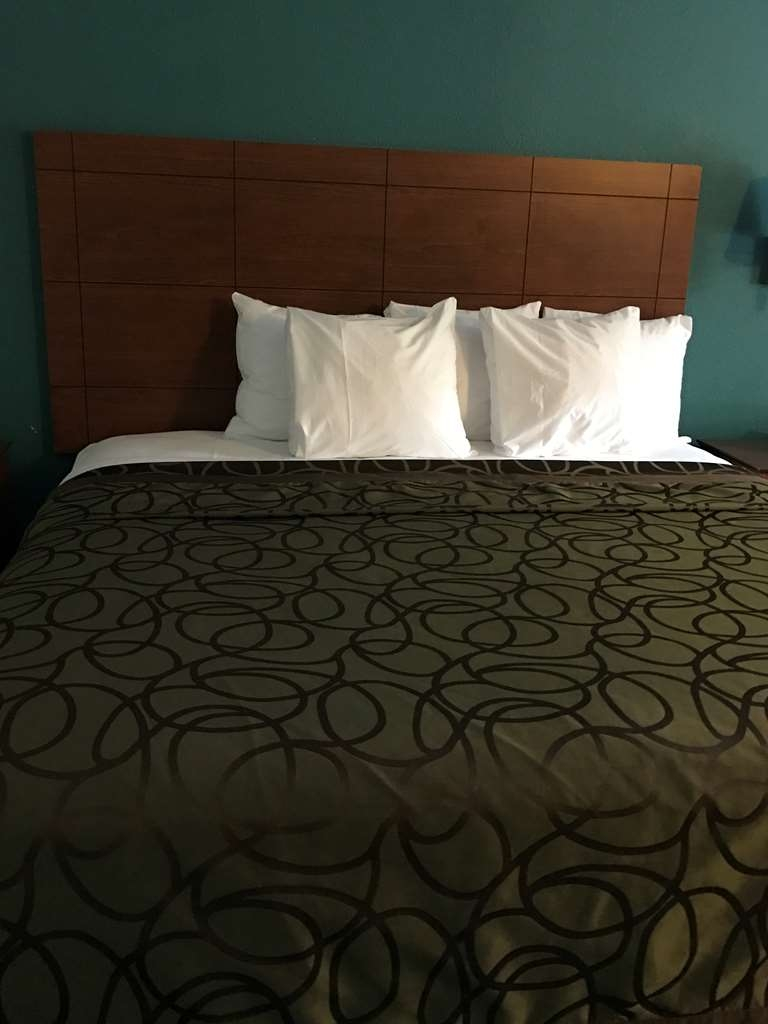 Best Western Tallahassee-Downtown Inn & Suites - King Bed