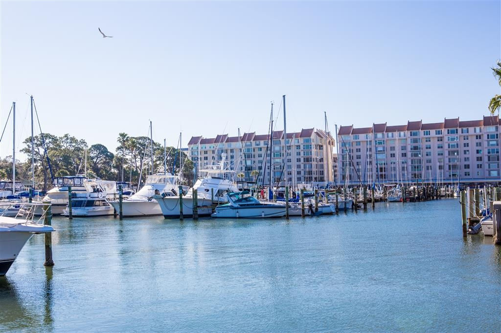 Best Western Plus Yacht Harbor Inn - View of Marina