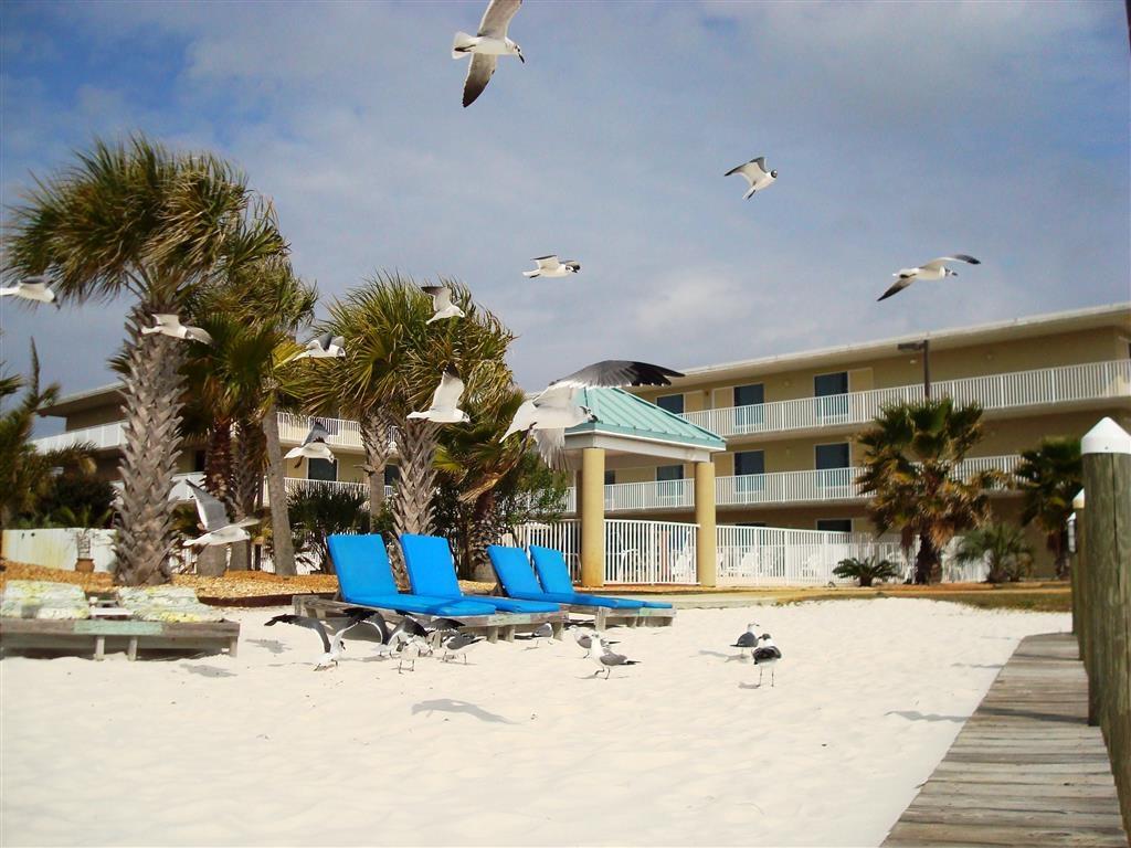 Best Western Navarre Waterfront - Beach Area