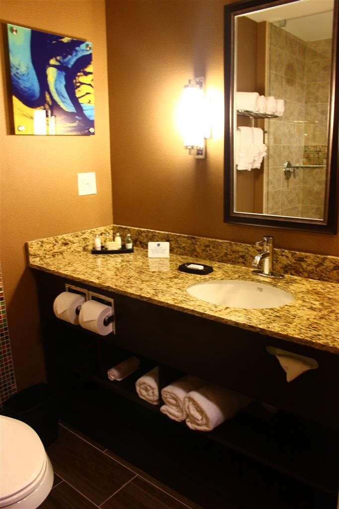 Best Western Plus Miami Executive Airport Hotel & Suites - Baño