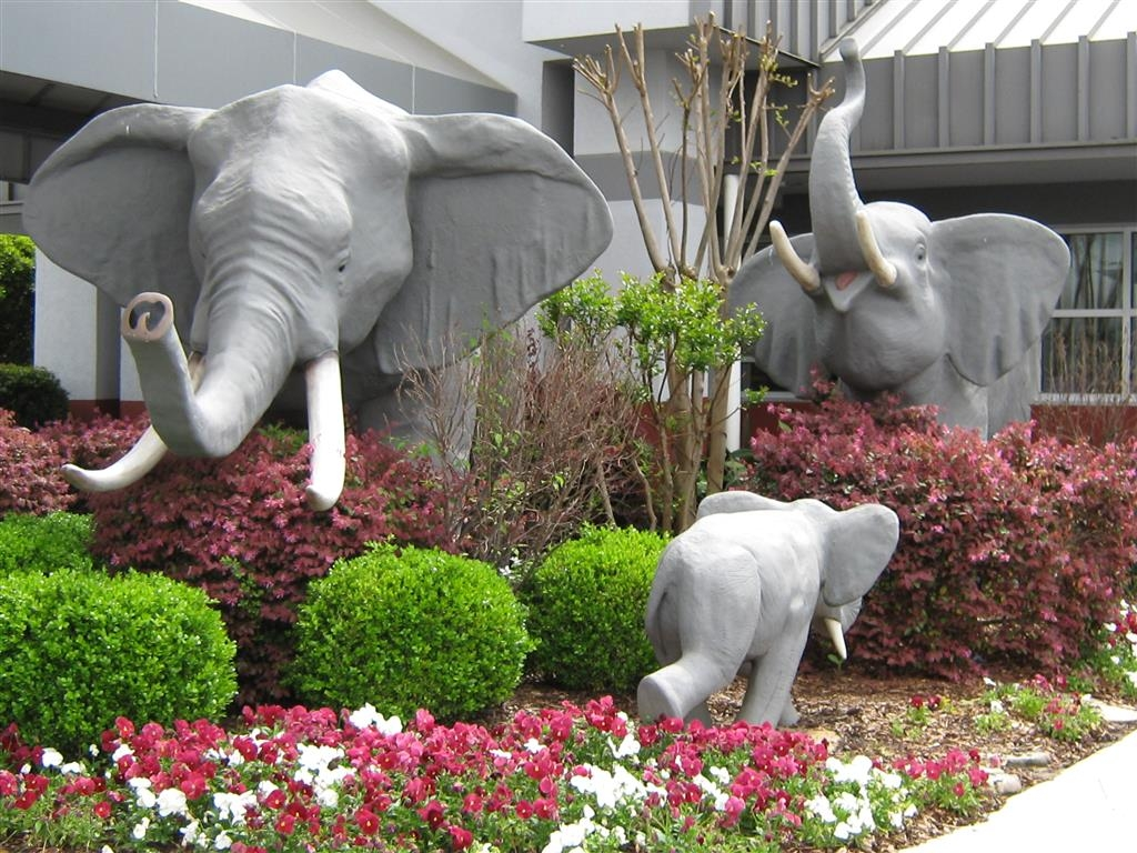 Best Western University Inn - Come run with the elephants!
