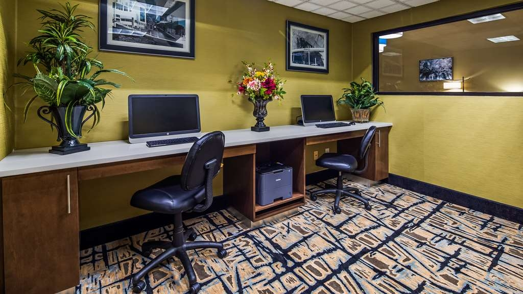 Best Western Plus McDonough Inn & Suites - centre des affaires