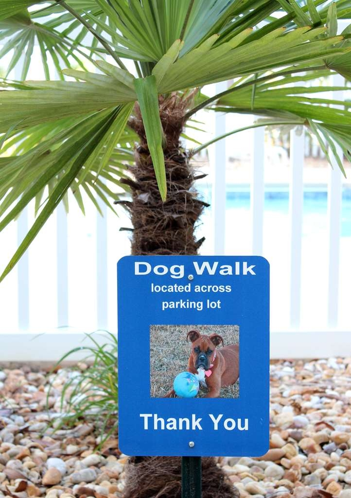 Best Western Plus Valdosta Hotel & Suites - We are so excited that you share your furry family members with us! We provide dog walks in all grassy areas, on all sides of the building, across from the parking lot.