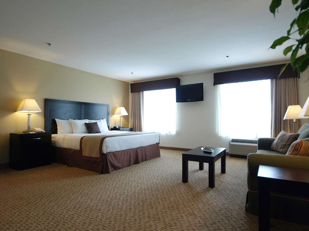 Best Western Plus Valdosta Hotel & Suites - All studios have an open floor plan with a bed and sitting area included.