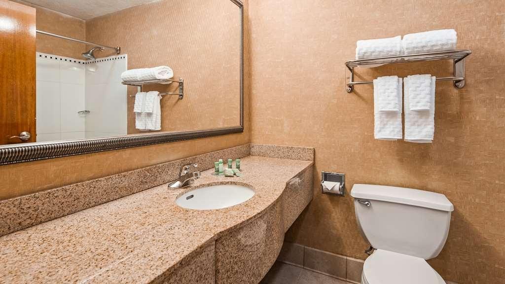 Best Western Gwinnett Center Hotel - Camere / sistemazione