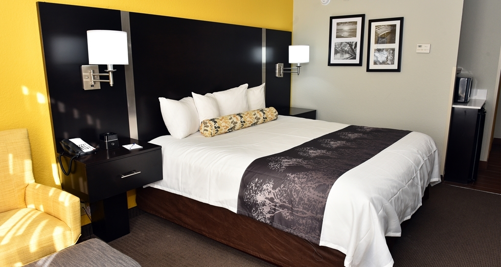 Best Western Plus Fairburn-Atlanta Southwest - Chambres / Logements