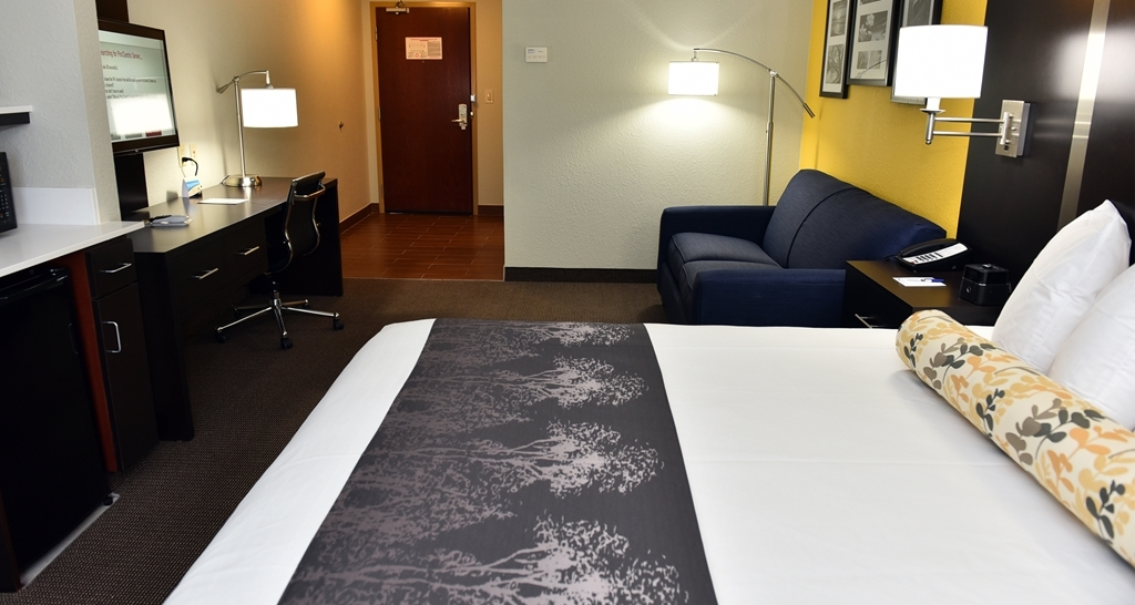 Best Western Plus Fairburn-Atlanta Southwest - These spacious rooms are perfect for business travelers and families.