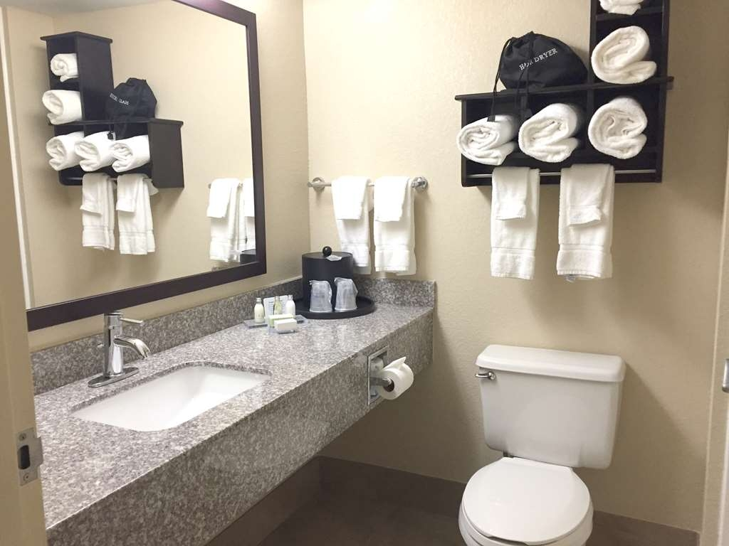 Best Western Plus Birmingham Inn & Suites - Spacious bathroom and shower area.