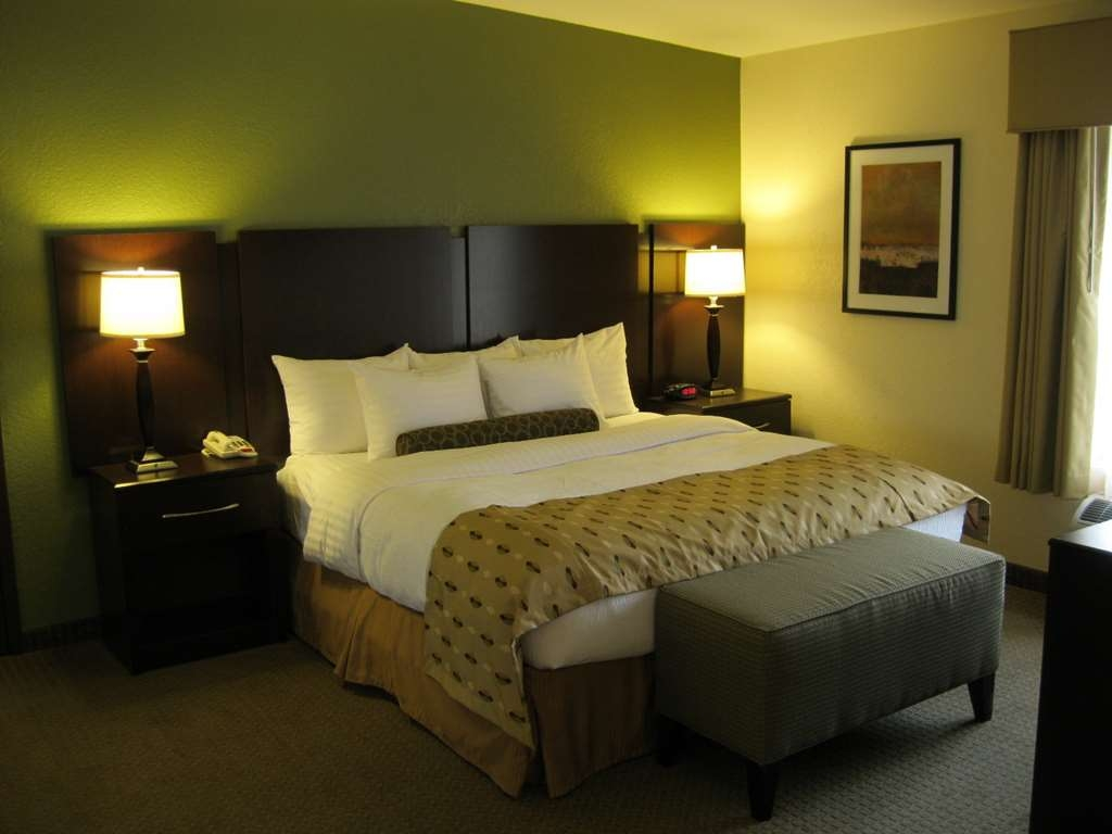 Best Western Plus Antioch Hotel & Suites - King Bed Guest Room