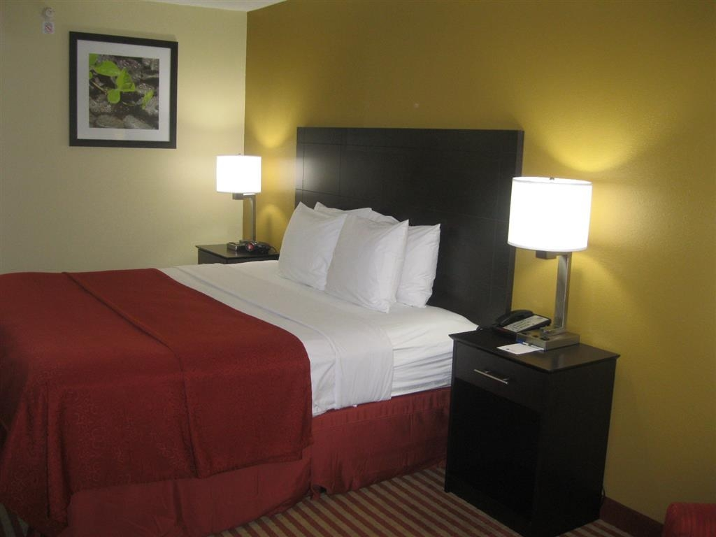 Best Western Jacksonville Inn - Guest Room