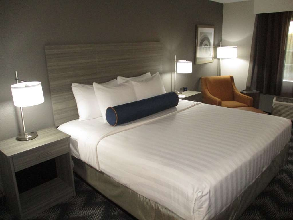 Best Western Plus Bolingbrook - Experience our new King rooms, which were designed for you!