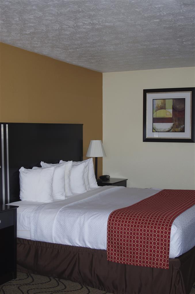 Best Western Campbellsville Inn - Guest Room