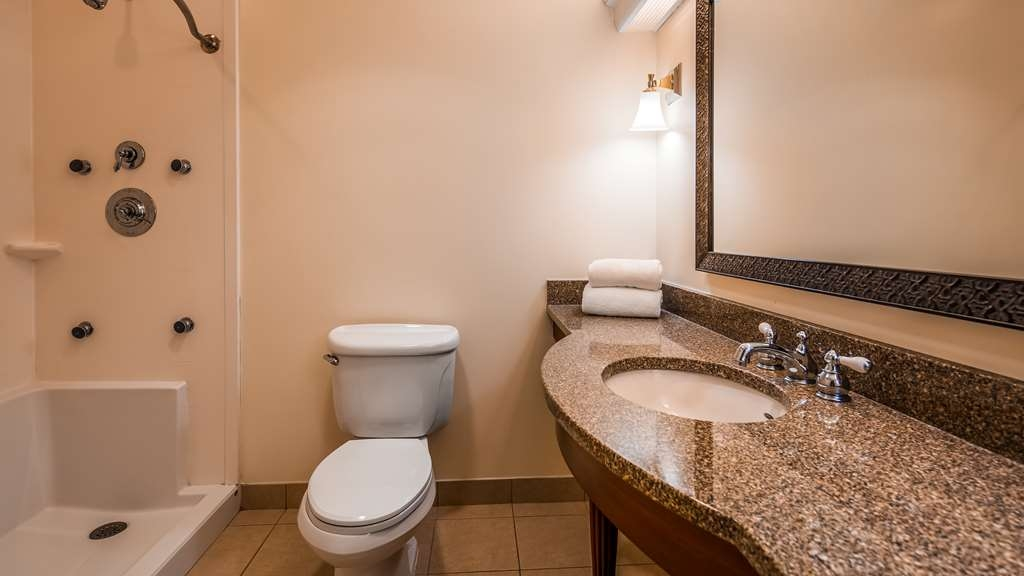 Best Western Adams Inn Quincy-Boston - Accessible Bathroom