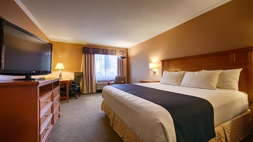 Best Western Lapeer Inn - Guest Room