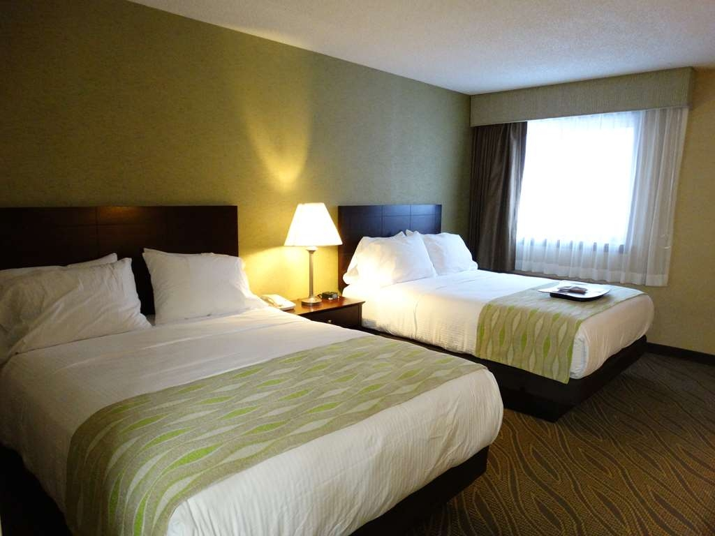 Best Western Gaylord - Camere / sistemazione