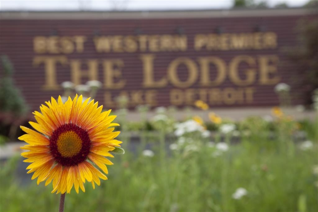 Best Western Premier The Lodge on Lake Detroit - Exterior grounds feature over 10 thousand native plants in eco-friendly rain gardens and shoreline restoration plantings.