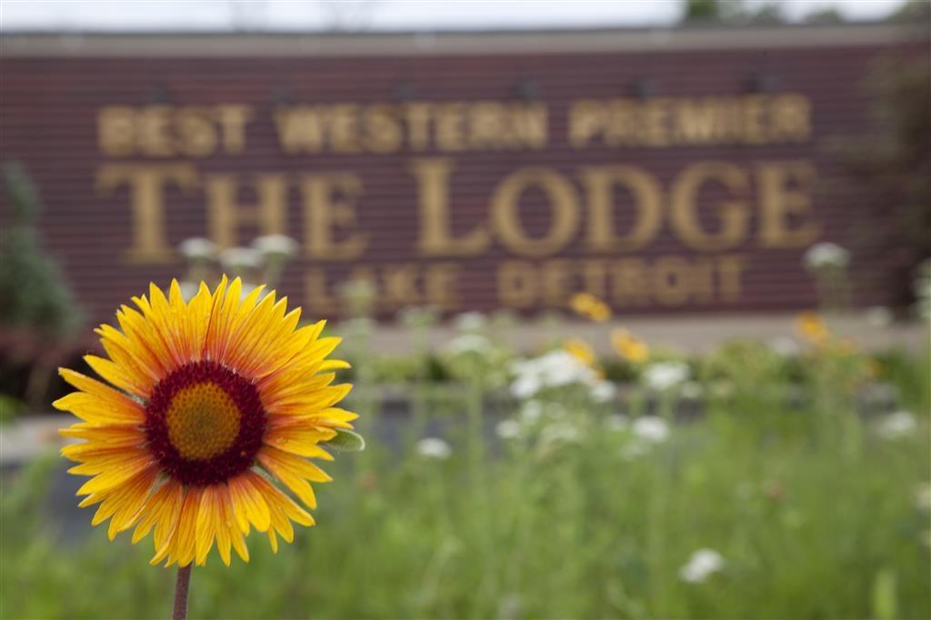 Best Western Premier The Lodge on Lake Detroit - Im Außengelände finden Sie einheimische Pflanzen