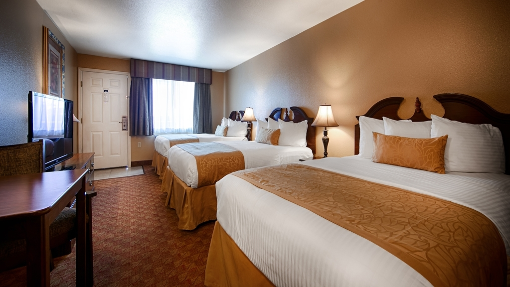 Best Western Fallon Inn & Suites - Guest Room