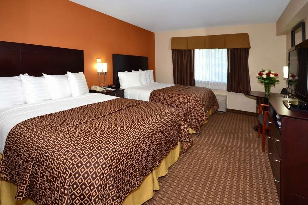 Best Western Concord Inn & Suites - Looking to bring a pet? Book our convenient pet friendly room with two queen beds.