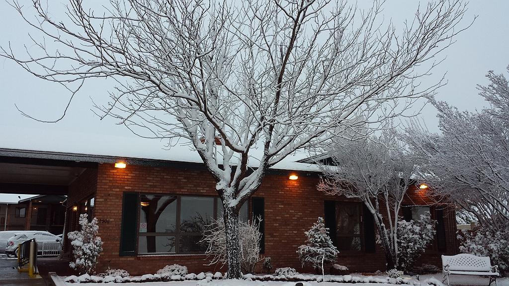 Hotel in Holbrook | Best Western Arizonian Inn