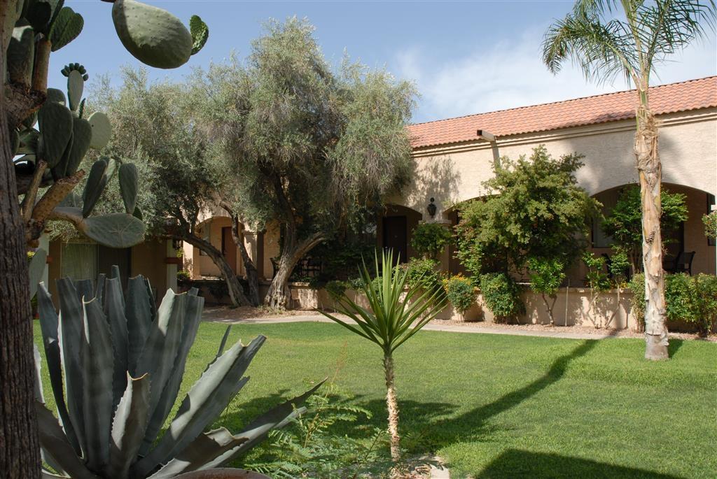 Best Western Phoenix Goodyear Inn - Innenhof