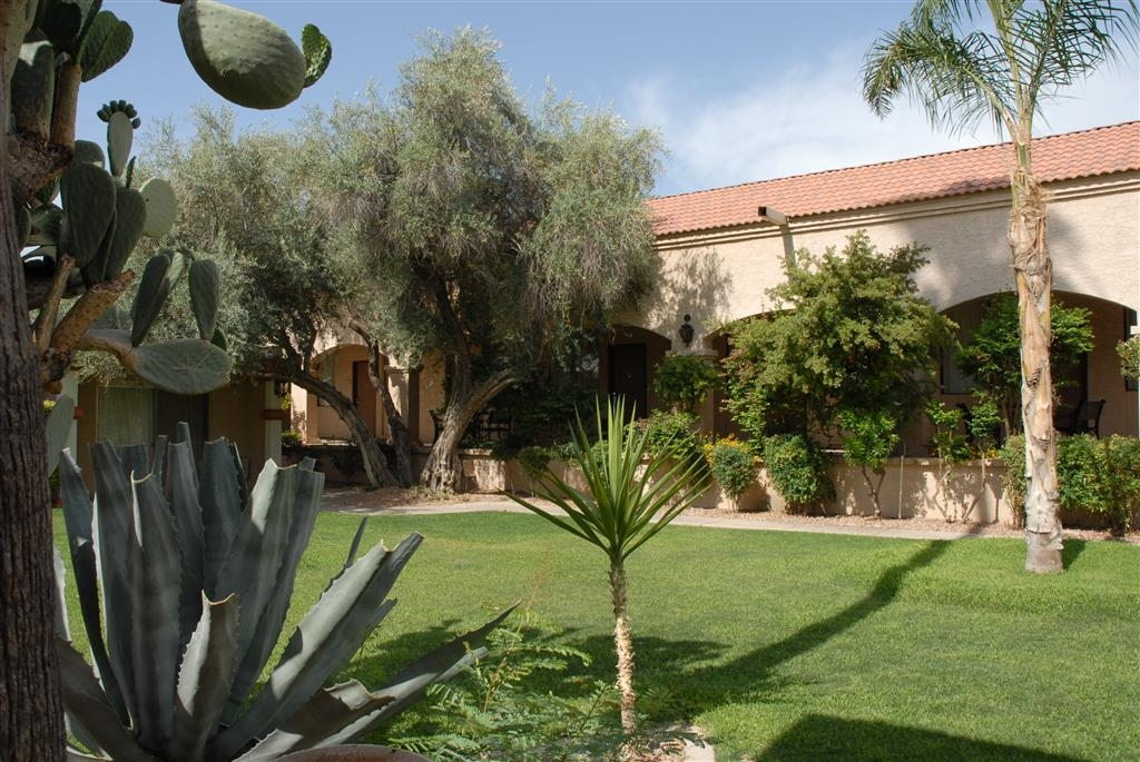 Best Western Phoenix Goodyear Inn - Courtyard