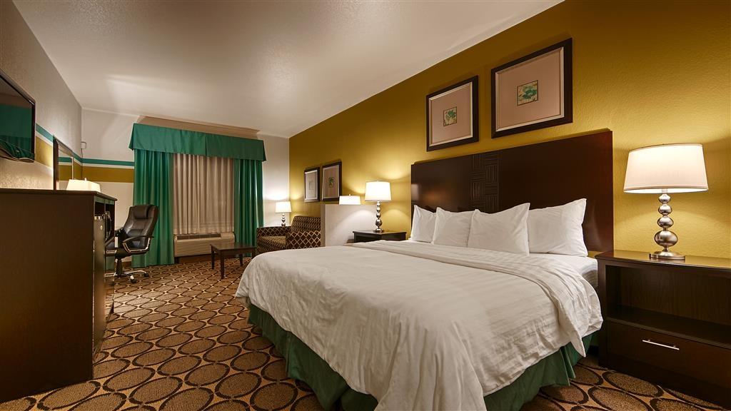 Best Western Douglas Inn & Suites - King Guest Room