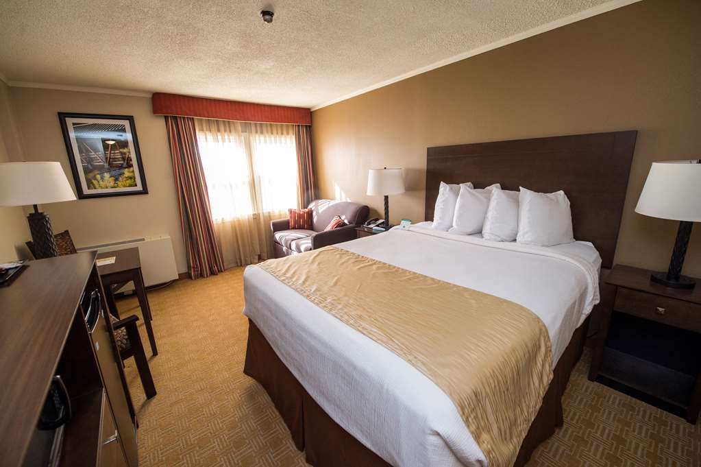 Best Western University Inn - One Queen Bed Guest Room