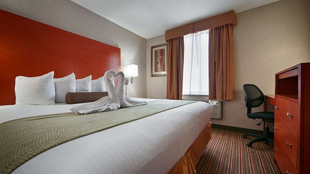 Best Western JFK Airport Hotel - Return to your comfortable king guest room and relax.
