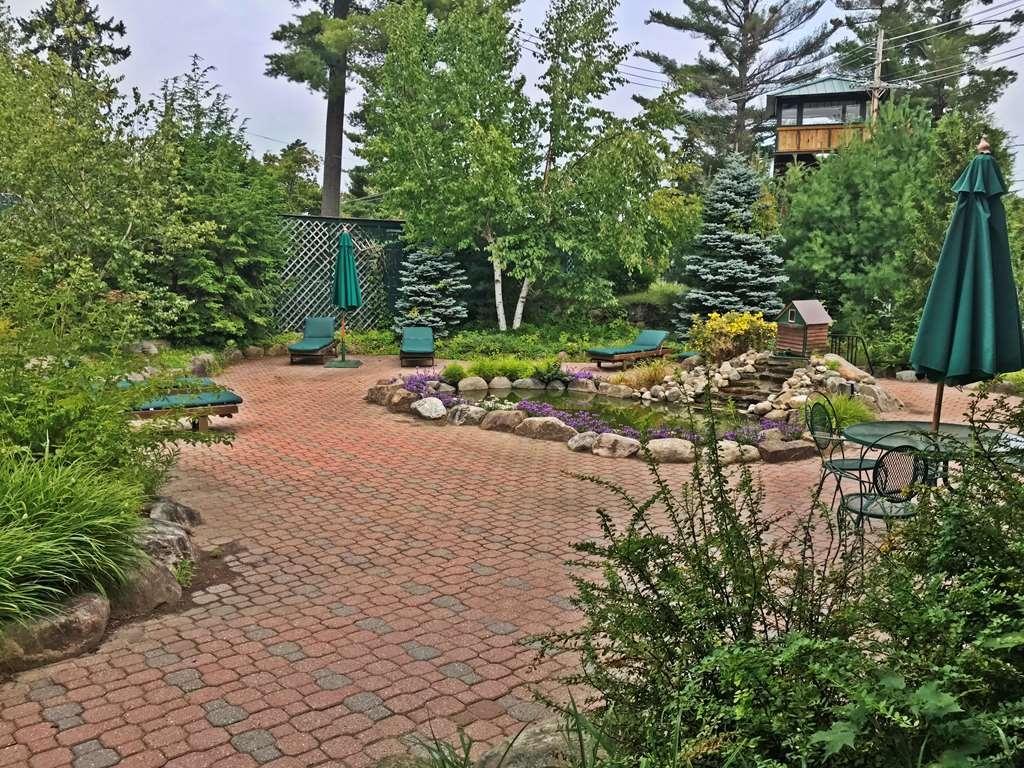 Best Western Adirondack Inn - fish pond