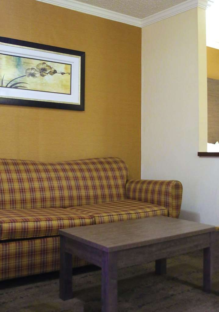 Best Western Plus Galleria Inn & Suites - Use the sofa bed in our kind guest room for extra sleeping space without the cost of an additional room.