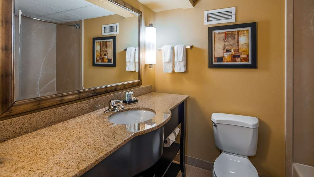 Best Western Plus Greensboro/Coliseum Area - Bathroom