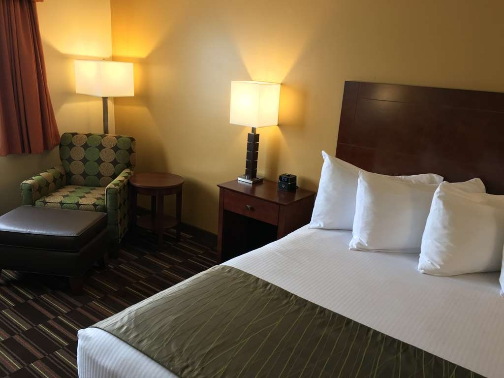 Best Western Falcon Plaza - Sweet dreams are made of these : fluffy pillows and crisp white sheets!
