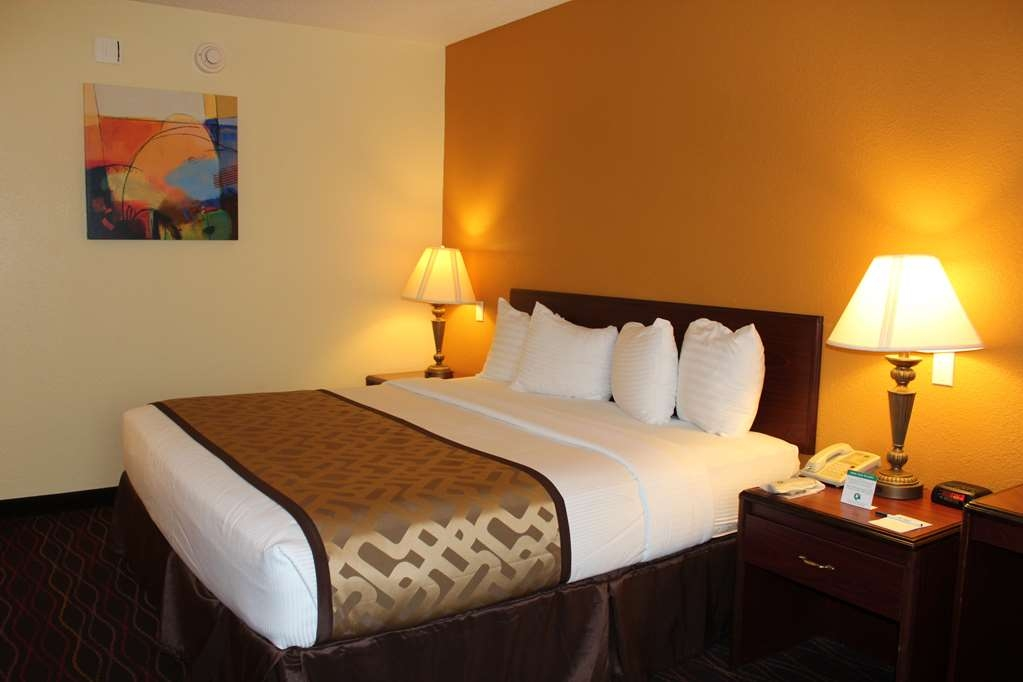 Best Western B. R. Guest - Relax after a long day of travel in our king guest room.