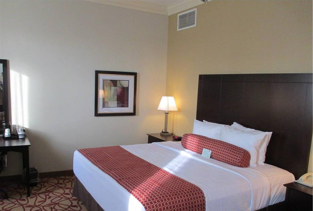 Best Western Park Hotel - Our sleek and sophisticated king guest rooms are equipped with a microwave and a refrigerator for your convenience.