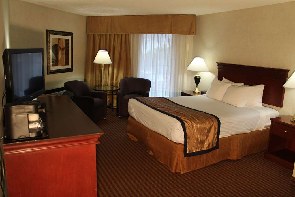 Best Western Greentree Inn - Relax and enjoy our single queen guest room.