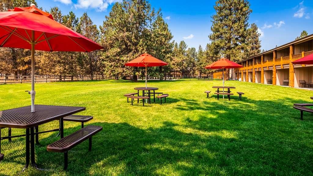 Best Western Ponderosa Lodge - proprietà amenità