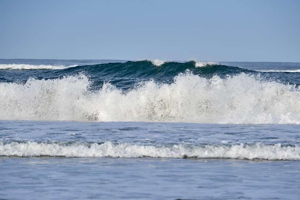 Best Western Plus Agate Beach Inn - Vista Exterior