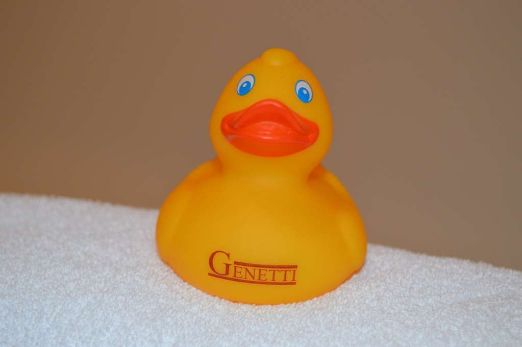 Best Western Plus Genetti Hotel & Conference Center - Take a splash with our Genetti Duck