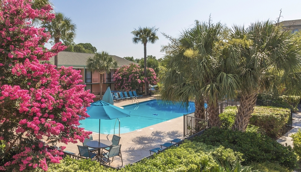 Best Western Charleston Inn - Vista de la piscina