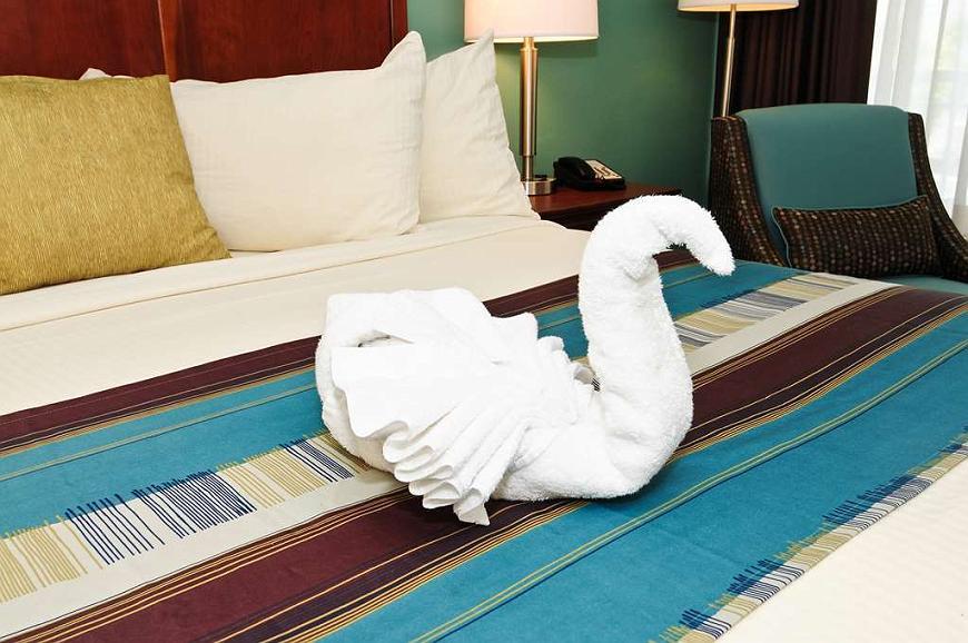 Sensational Hotel In Myrtle Beach Best Western Plus Grand Strand Inn Creativecarmelina Interior Chair Design Creativecarmelinacom