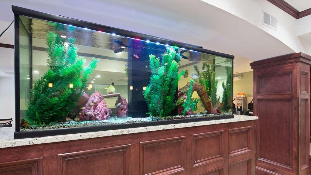 Best Western Patriots Point - Beautiful lobby aquarium