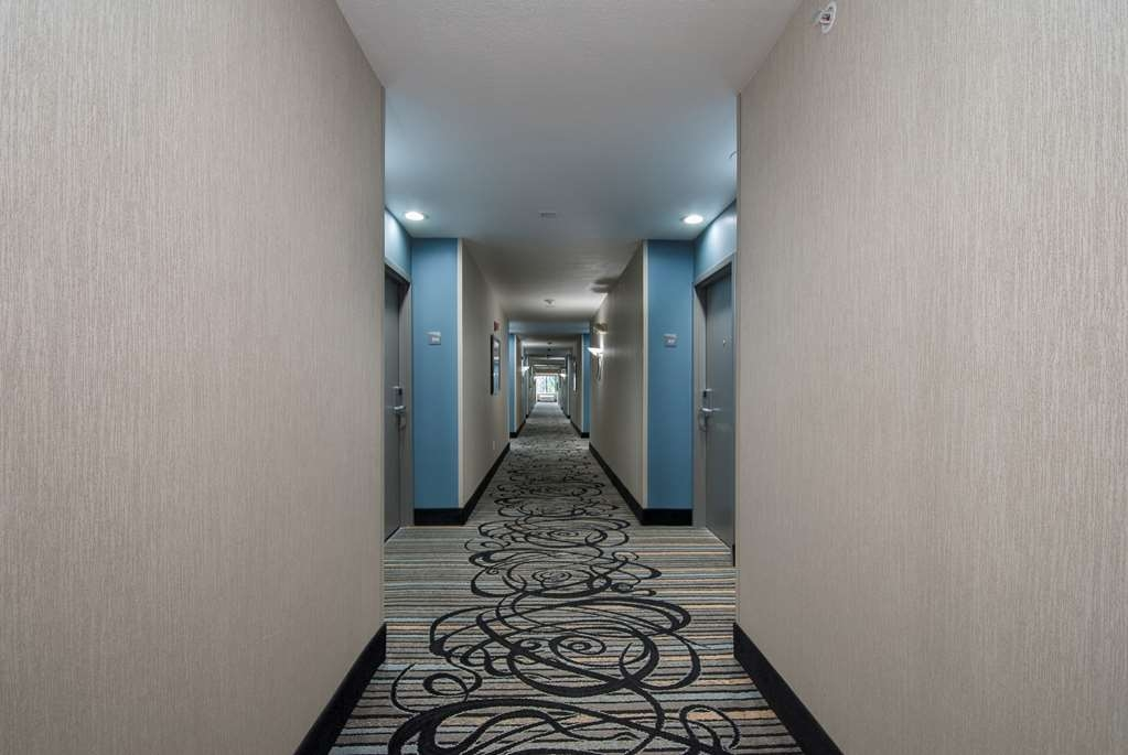 Best Western Travelers Rest/Greenville - Interior Corridors