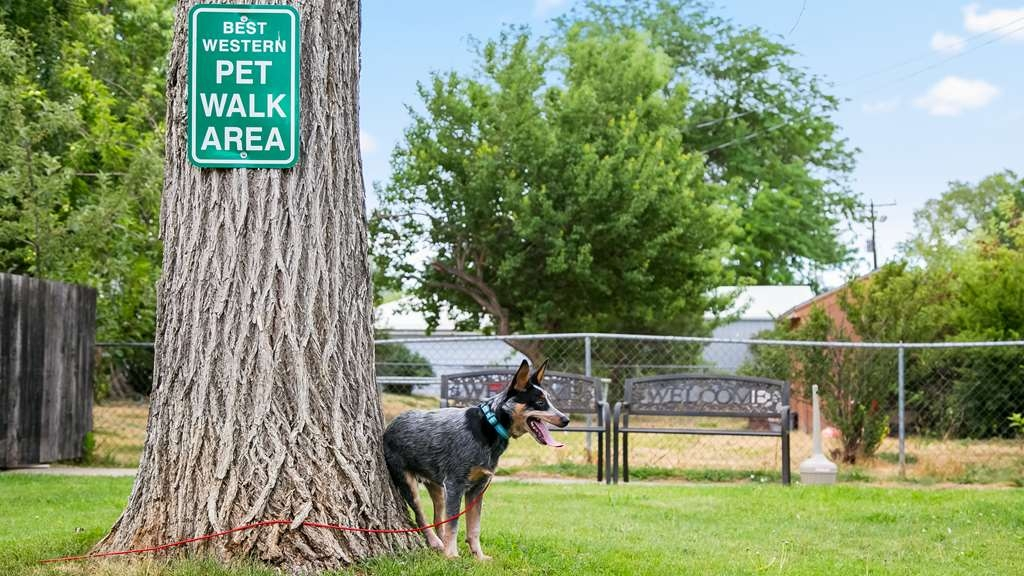 Best Western Plains Motel - Dog Park