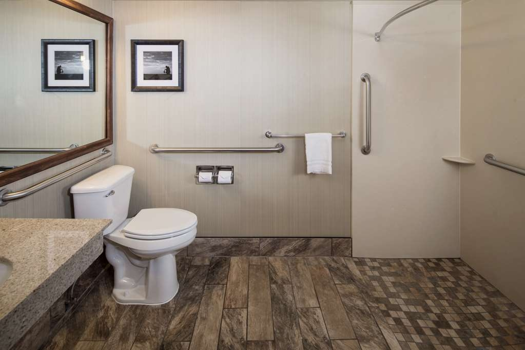 Best Western Ramkota Hotel - Guest Room ADA King bath