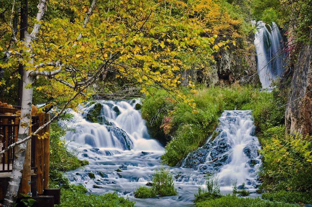 Best Western Black Hills Lodge - Roughlock Falls in Spearfish Canyon. Photo courtesy of South Dakota Department of Tourism
