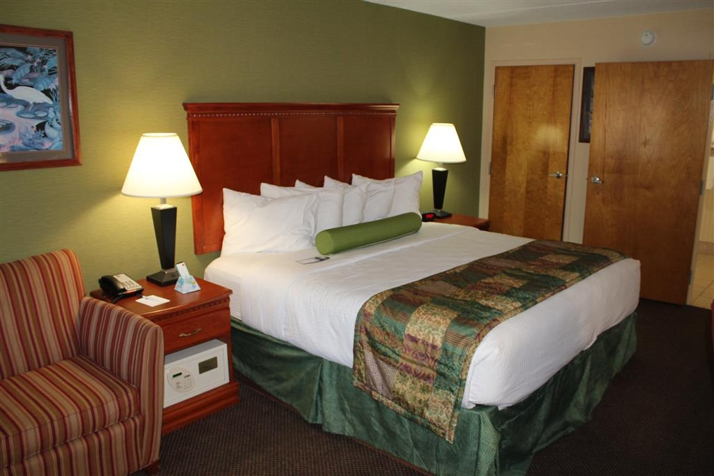 Best Western Celebration Inn & Suites - Our mobility accessible king guest room also features a 32-inch LCD TV, microwave, and is located on the ground floor.