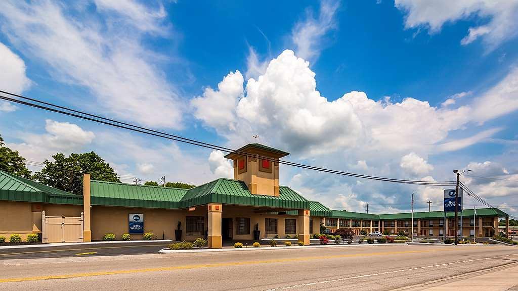 Best Western Tree City Inn - Gegend