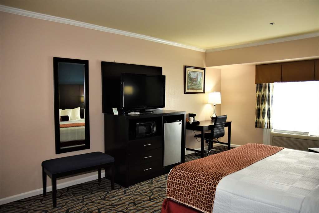 Best Western Spring Hill Inn & Suites - Standard King Bed Guest Room
