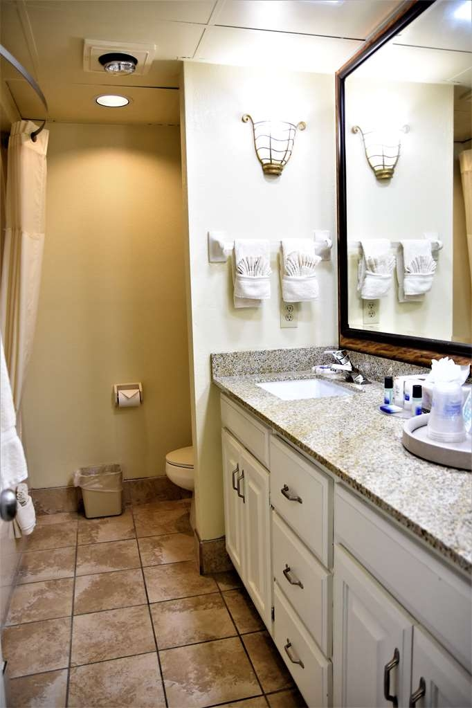 Best Western Spring Hill Inn & Suites - King or Double Guest Bathroom